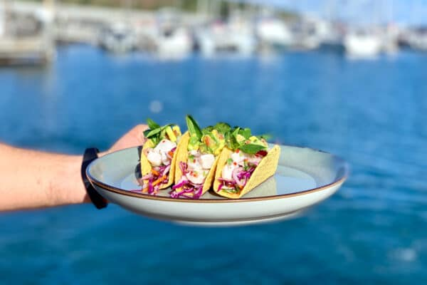 Spotted Mackerel Ceviche Tacos